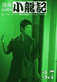 fanzine_jp_shoryuki_3_7.jpg