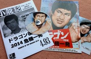 fanzine_jp_shoryuki_493.jpg