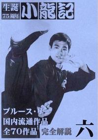 fanzine_jp_shoryuki_6a.jpg