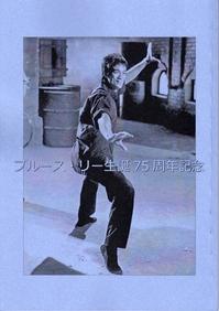 fanzine_jp_shoryuki_6b.jpg