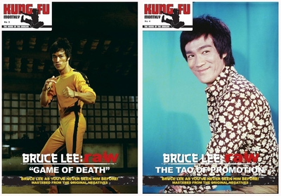 postermagazine_uk_kungfumonthly_vol3&4.jpg